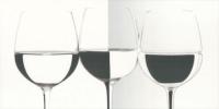 Paradyz dekorcsempe Paradyz Vivida Bianco Vine dekorcsempe