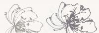 Paradyz dekorcsempe Paradyz Midian Bianco dekorcsempe A
