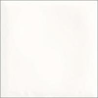 Paradyz falicsempe Paradyz Tamoe Bianco falicsempe 9,8 x 9,8